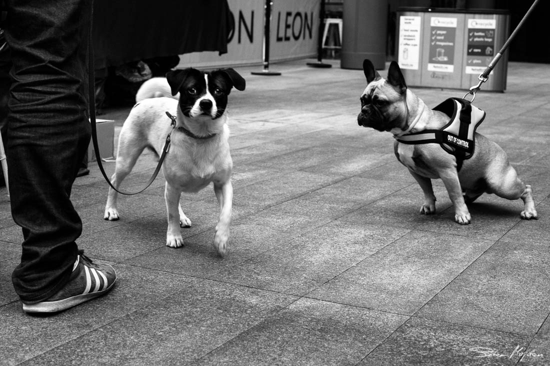 street-photography-peter-majdan-7.jpg