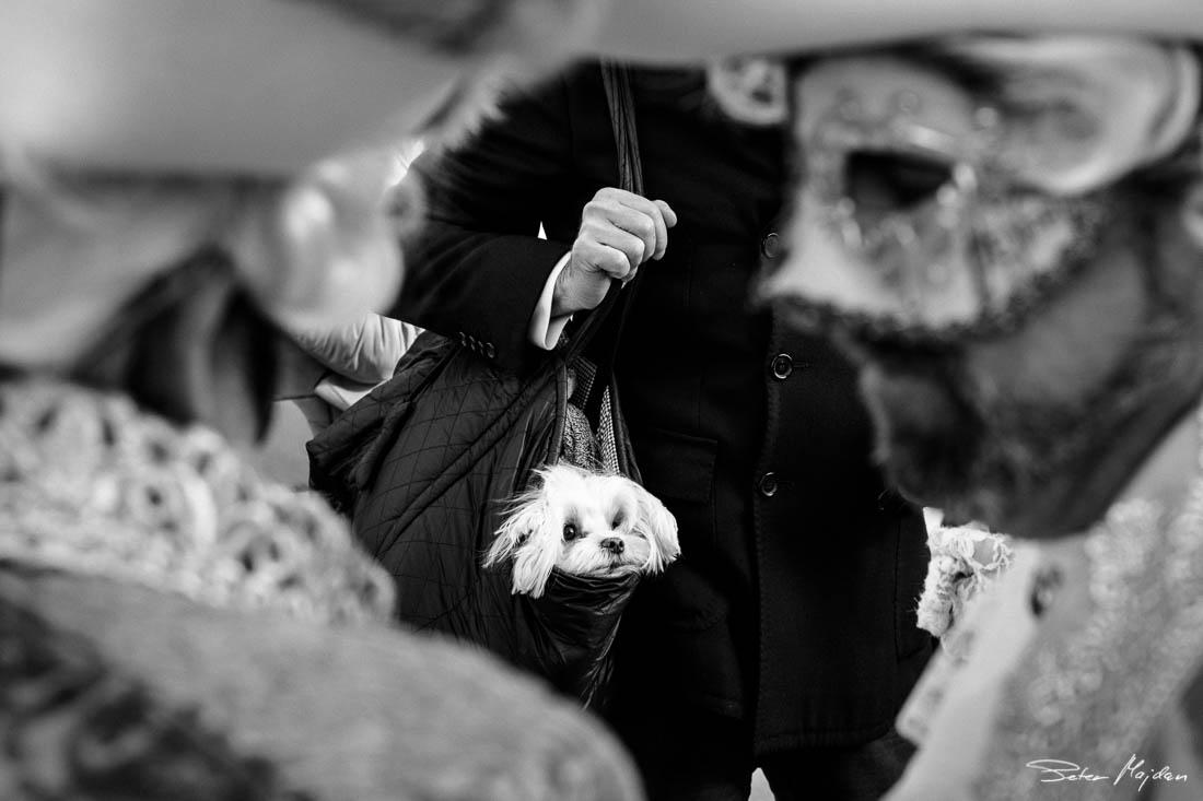 street-photography-peter-majdan-13.jpg