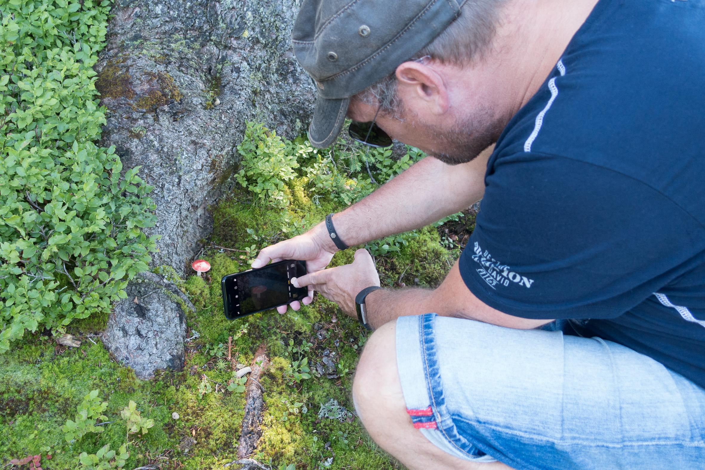 Fotografieren mit dem Handy   Tricks & Tipps von Werner Harrer