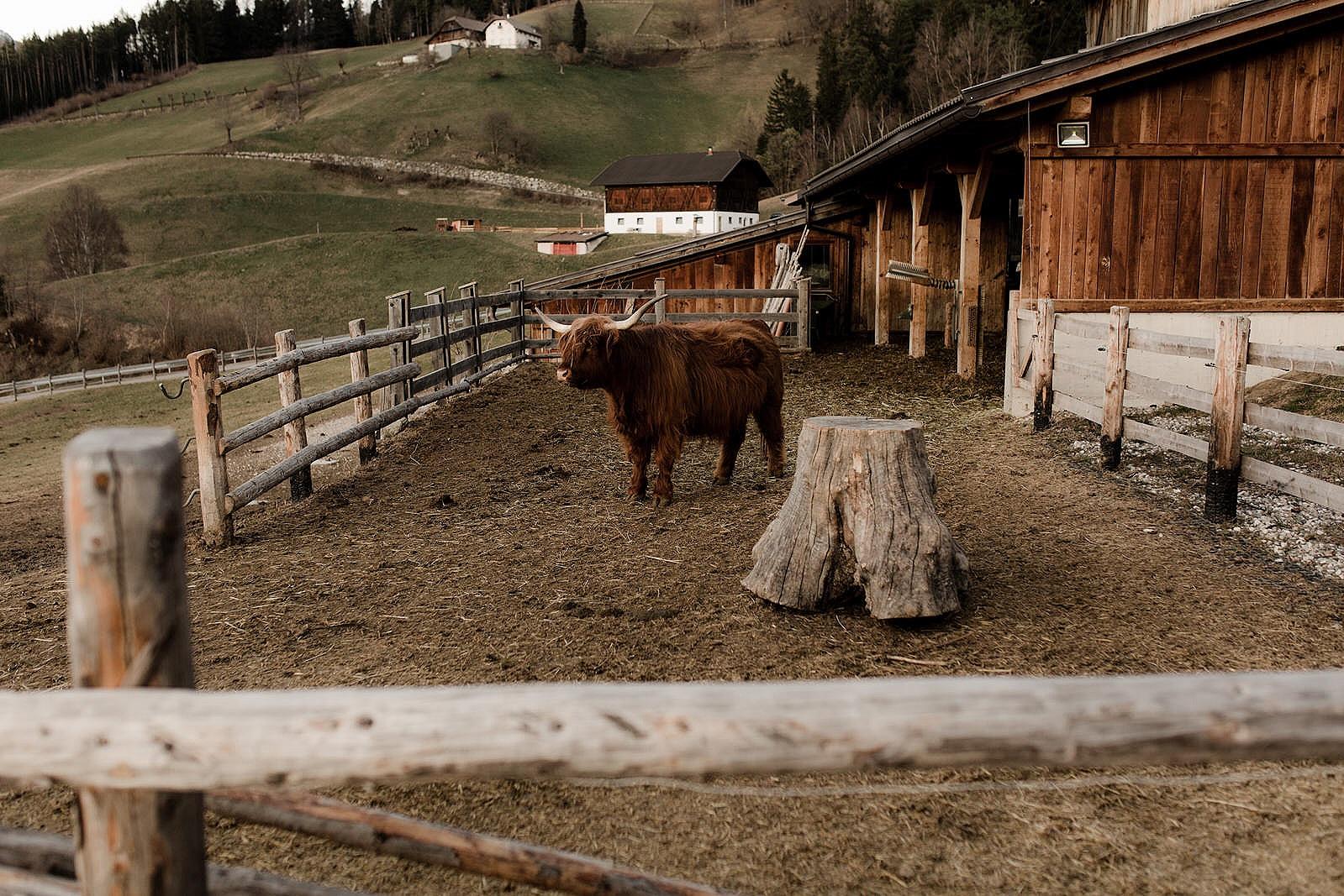 Adventurous+Dolomites+Elopement+Wedding+Fotomagoria49.jpg
