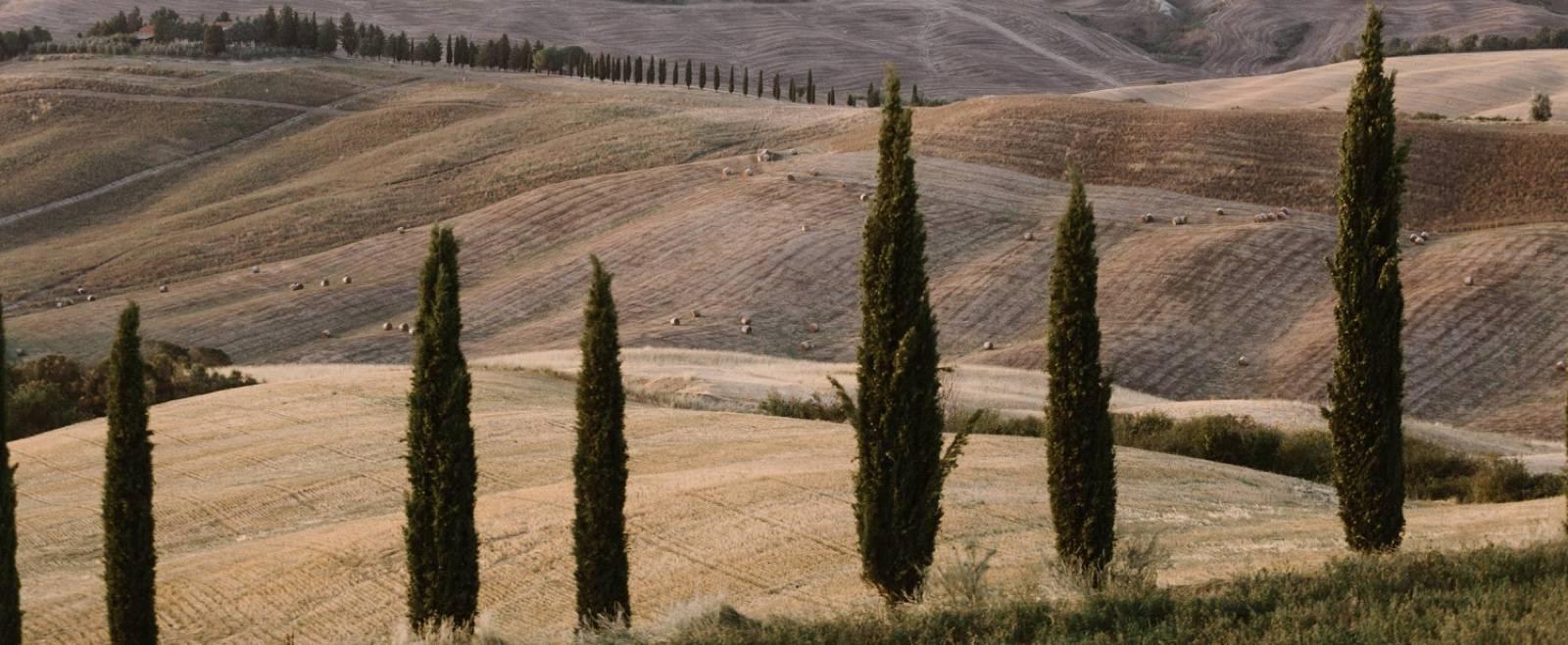 Fotomagoria Tuscany Wedding Photographer 20.jpg