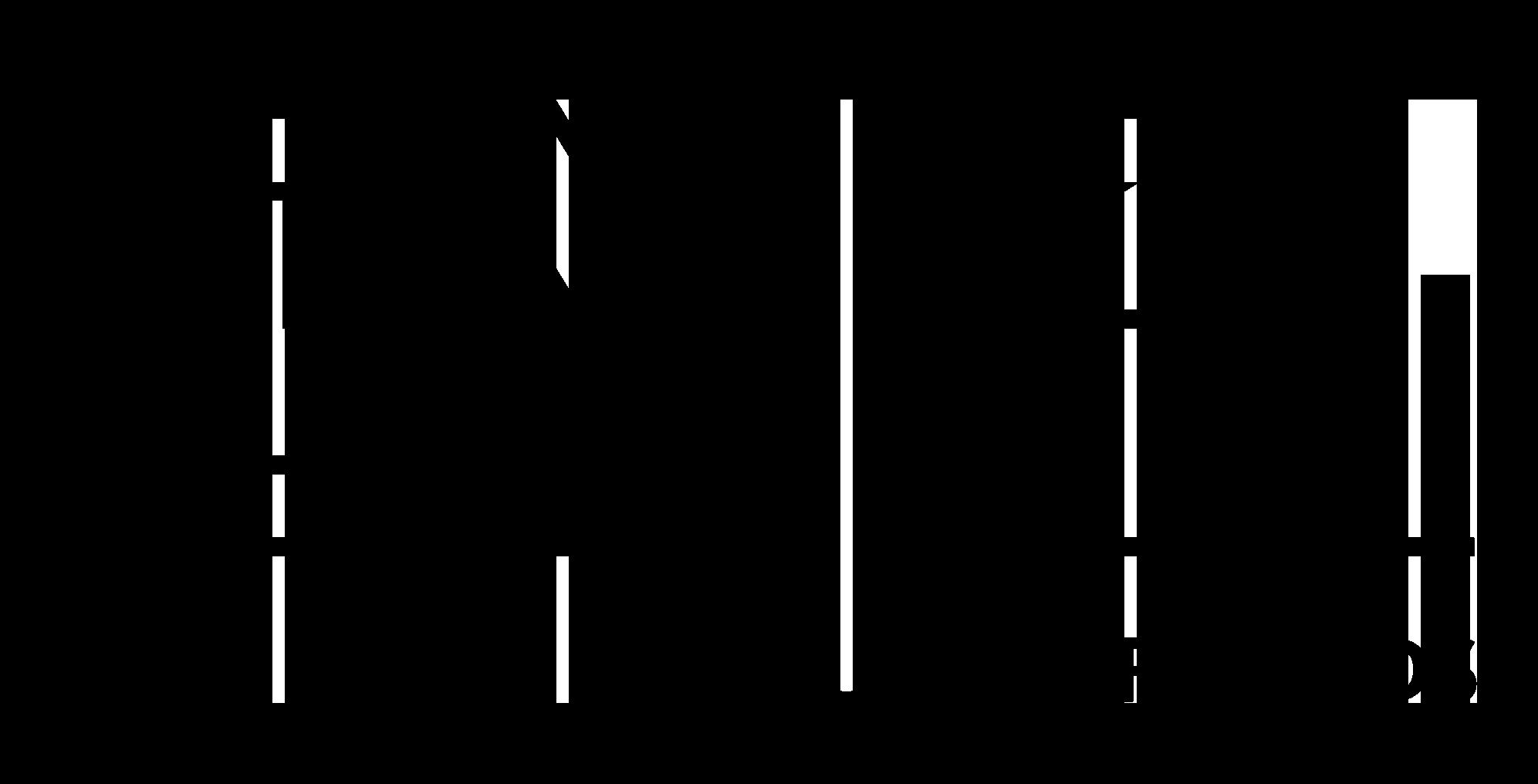 Logo BNG Cultuurfonds zwart.png