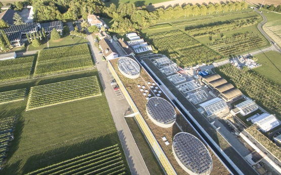 Centre de recherches agronomiques de la Confédération et haute école en viticulture et œnologie, Changins