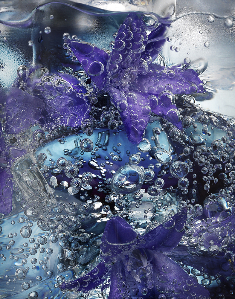 Cocktail Ice Close Up - Purple Flowers RET LR.jpg