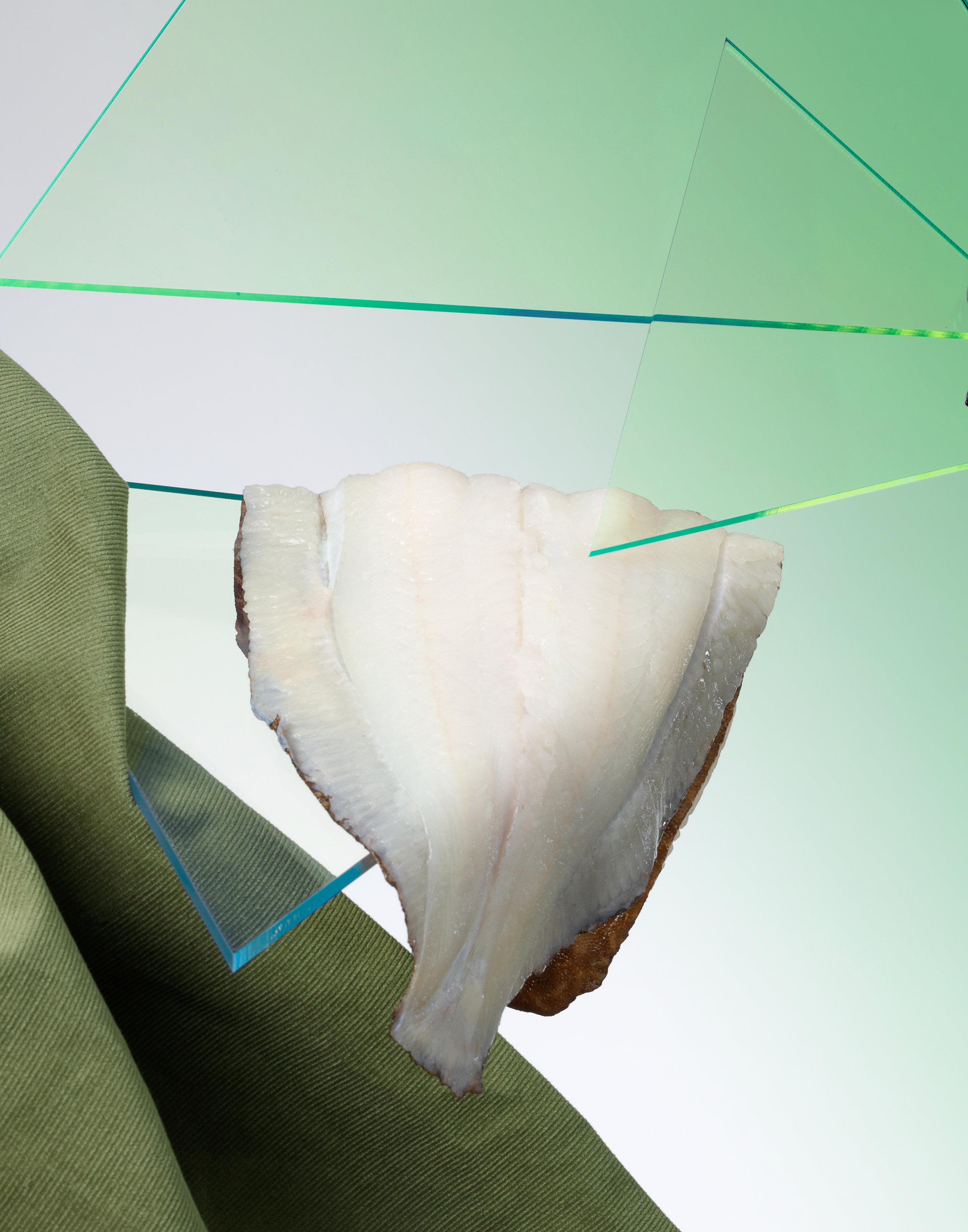 Perspex Green Lemon Sole RET11x14.jpg