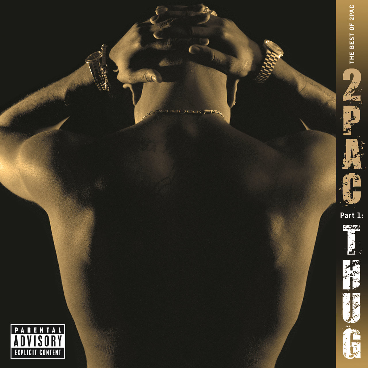 2Pac - The Best Of 2Pac Pt. 1 - Thug