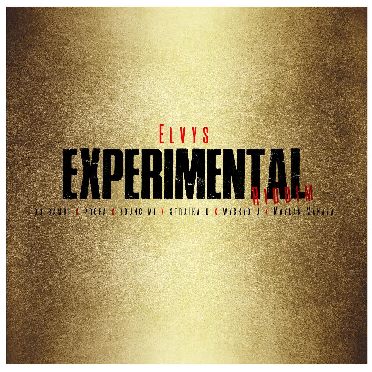 Experimental Riddim