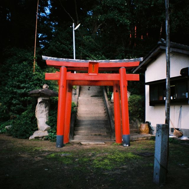 Itoshima shrines #35mm #lomography