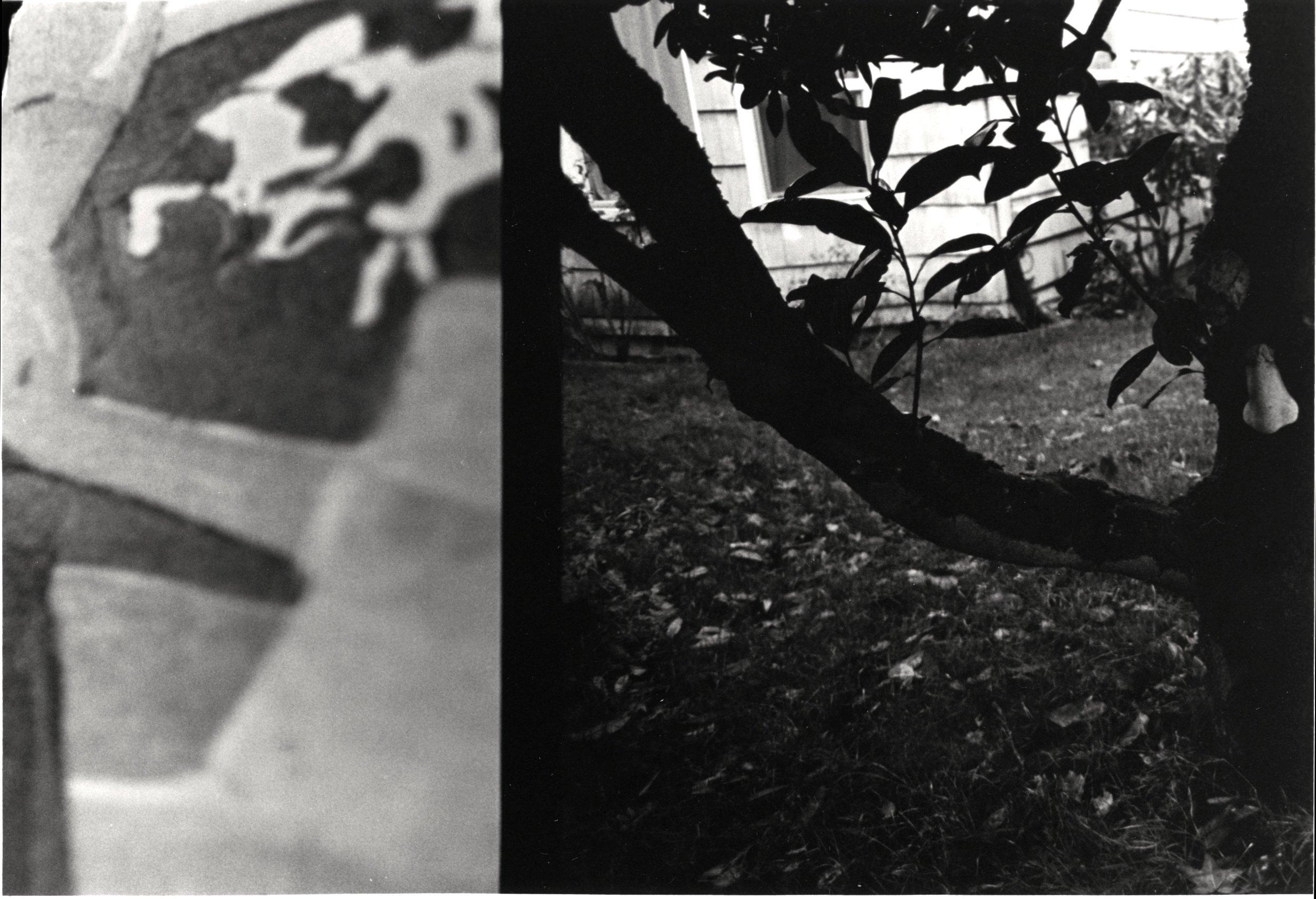 35mm black and white photograph, 2012       function $th_doReturn(a){var b=document.getElementById('$th_texthelpReturnValueID');b!=null&&(b.setAttribute('result',a),a=document.createEvent('Events'),a.initEvent('$th_texthelpReturnEvent',!0,!1),b.dispatchEvent(a))};    function rw_sendSocketMessage(aData){$th_doReturn(aData);};