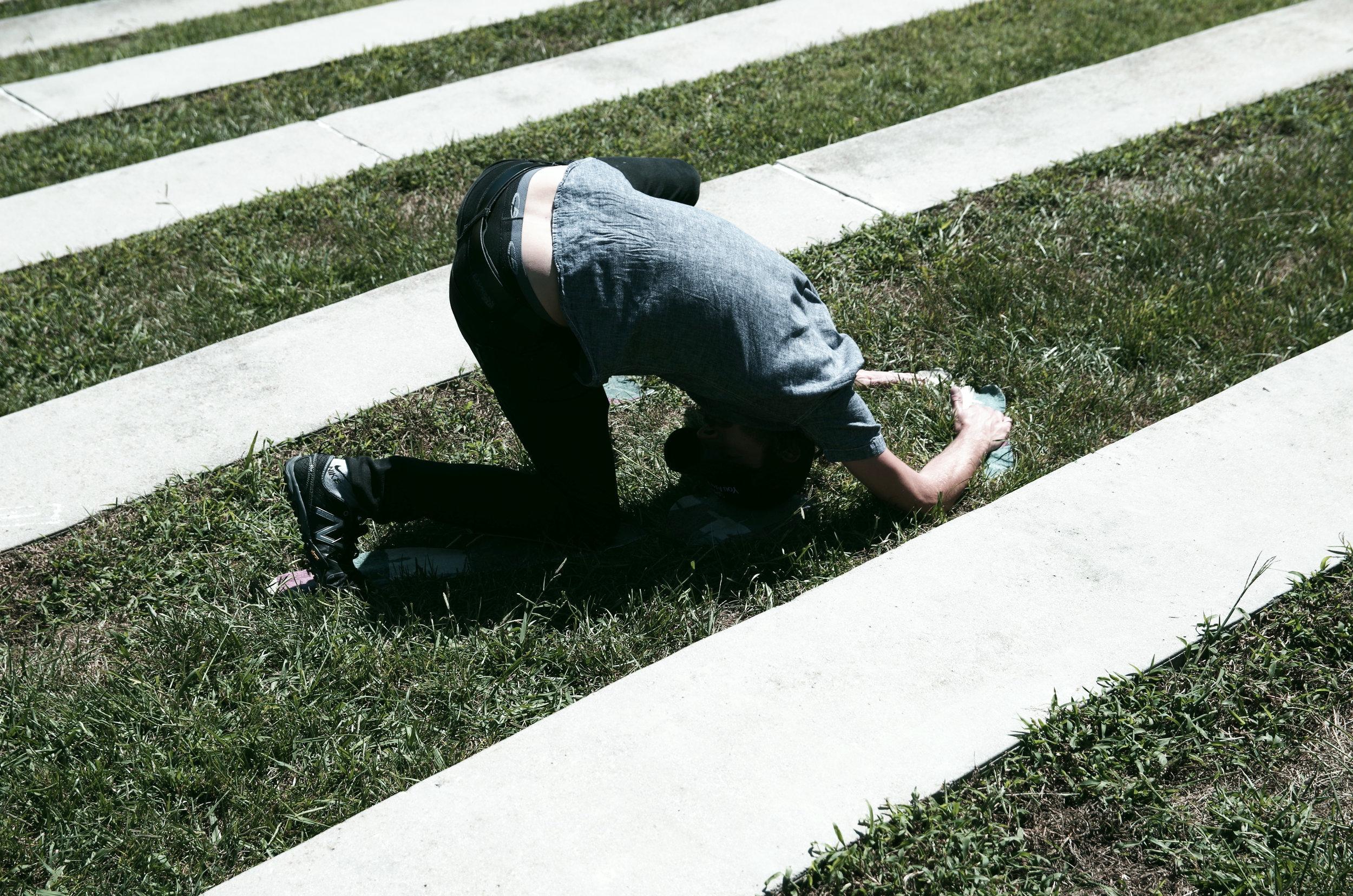 UTK Grass