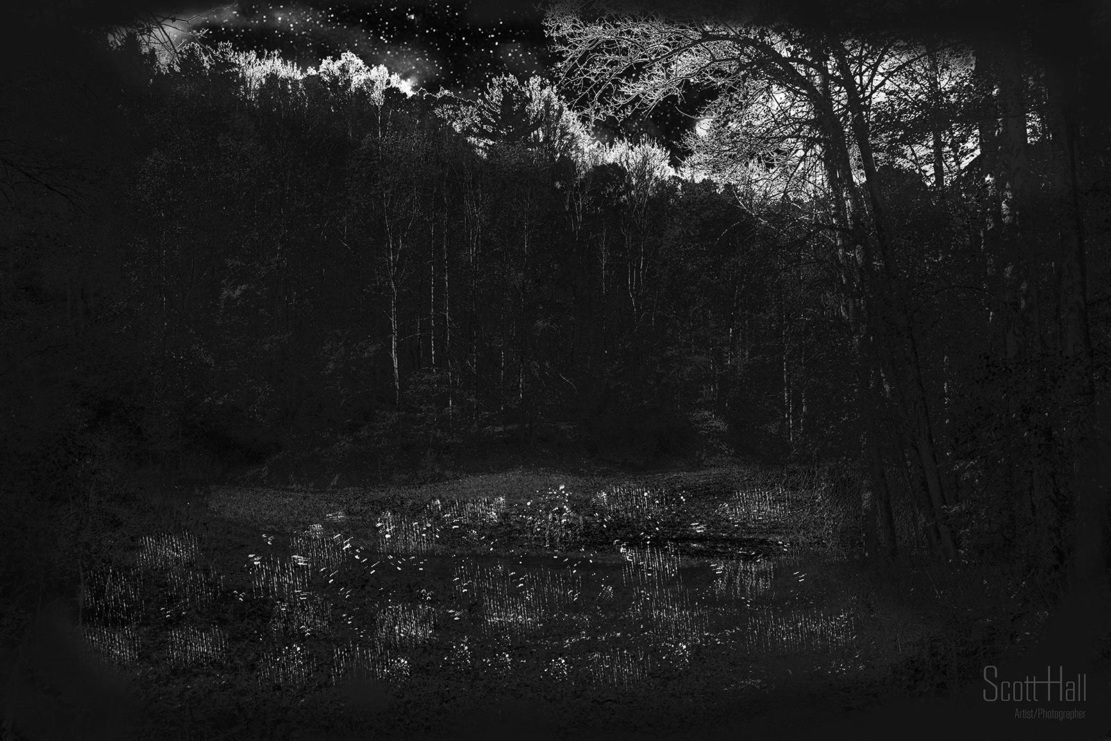 Stars Fire Creek Mt IMG_4246.jpg
