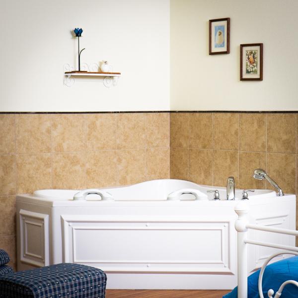 Water Birth Tub