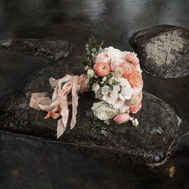 This is why I leave the photography to the professionals! In love with this gorgeous shot by @michaeltallman of Andrea's bouquet- and can't wait to see more from this beautiful wedding.  #weddingbouquet #flowers #ido #bridal #weddinginspo #flowers #florist #vermontflorist #newenglandflorist #vermontwedding #peach #pastel #junebugweddings #greenweddingshoes #stylemepretty #hellomay