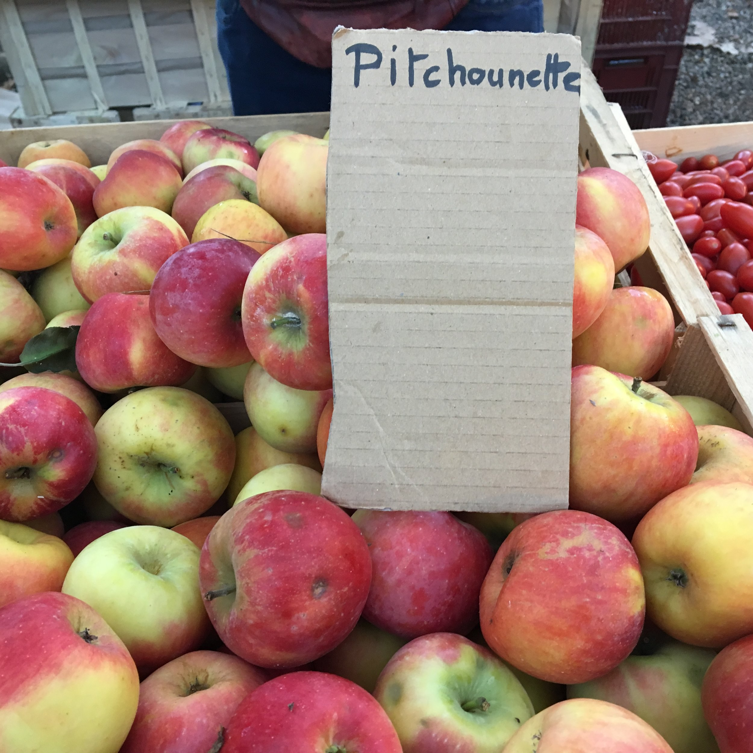 Favorite apples from Marché Saint-Seurin, every Friday