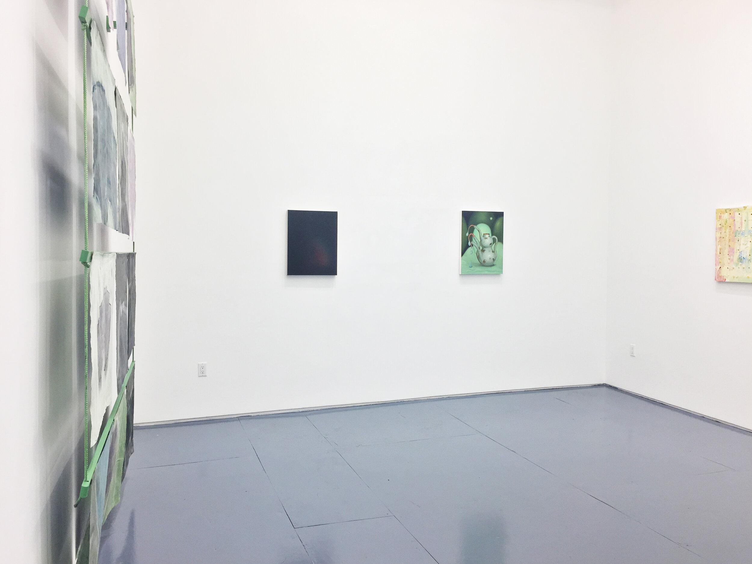 """Am Torc Ar Gail/I Am A Strong Wild Boar , 2019, Acrylic, dye, muslin, rope, wood, 120"""" X 96"""" X 6"""", Installation view III"""