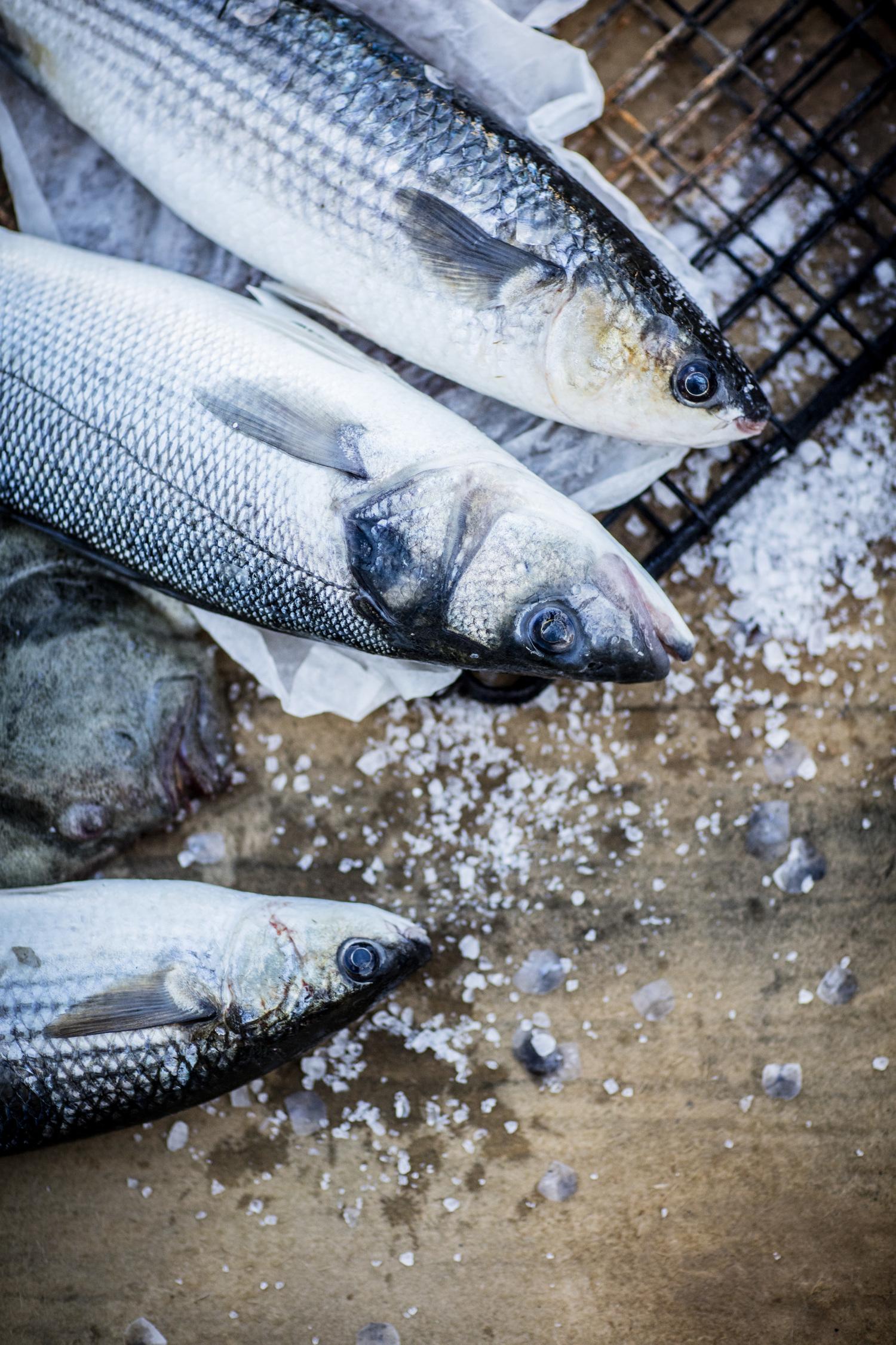 Fish baked in Salt.jpg