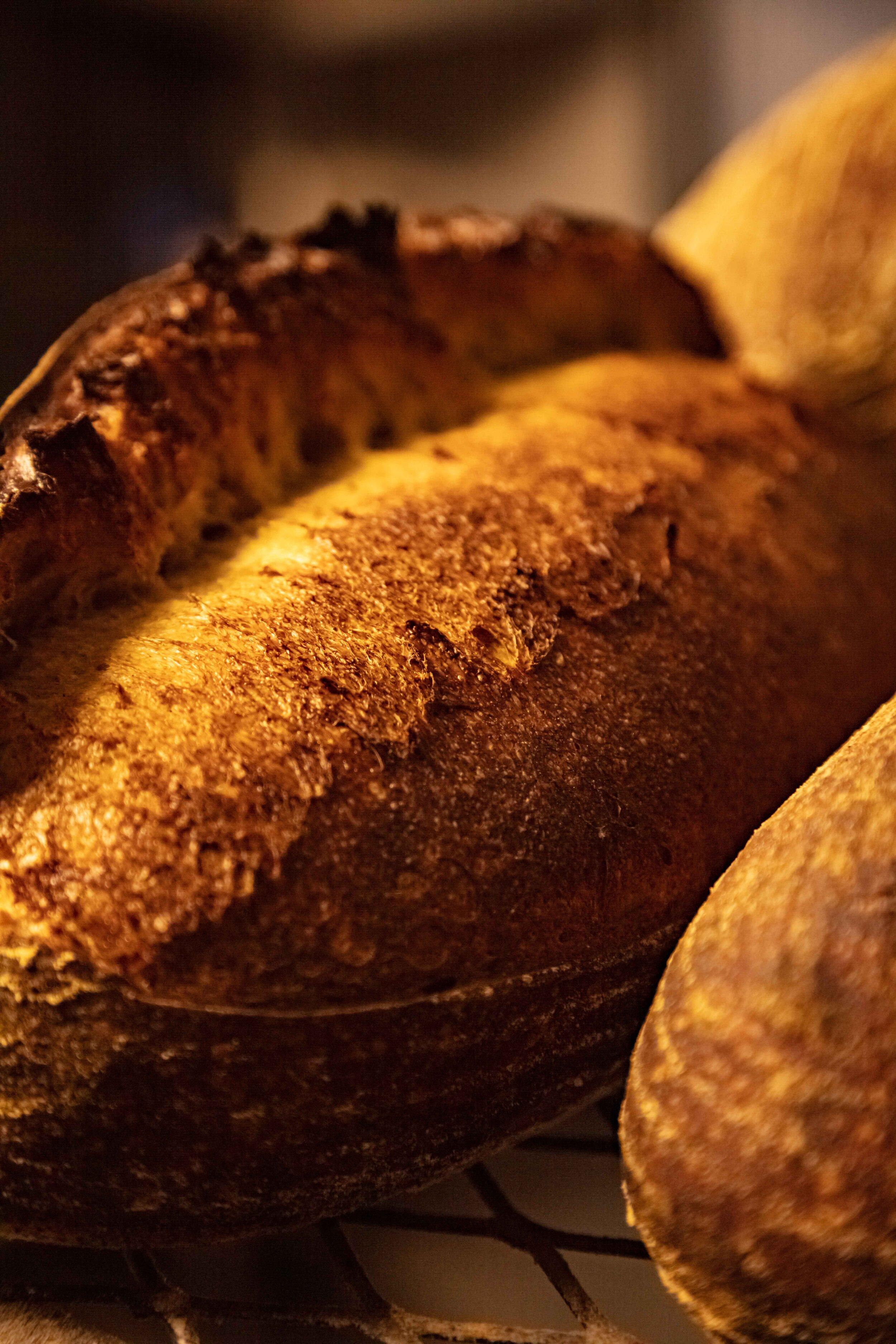 JAN Journal 3 - Bread Gypsy-42.jpg