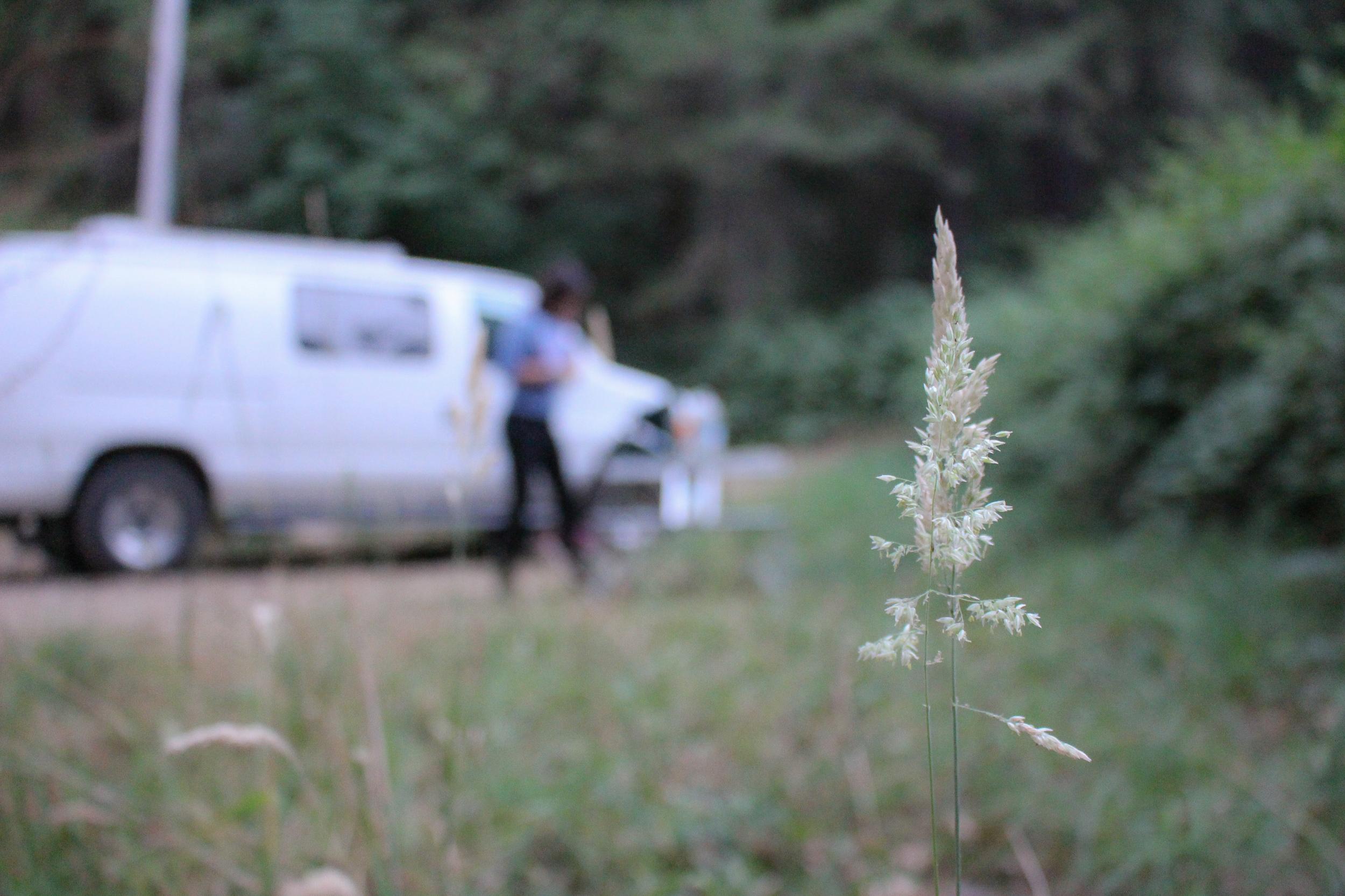 travel photography blog california hipcamp outdoors