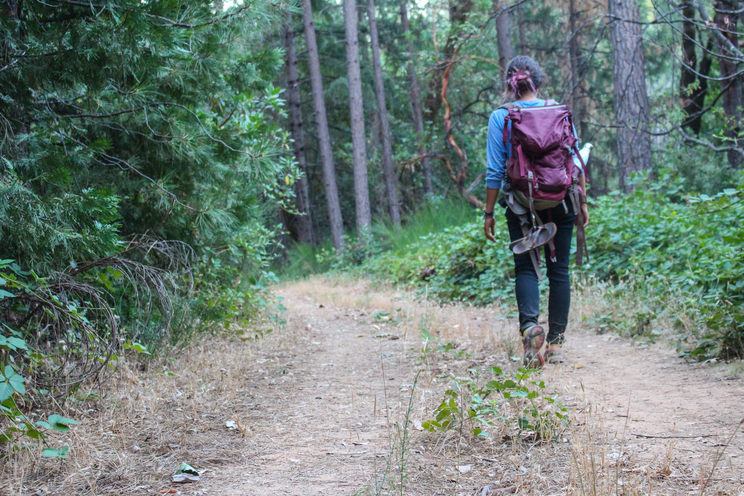 hipcamp california travel blog photography outdoors solo female travel