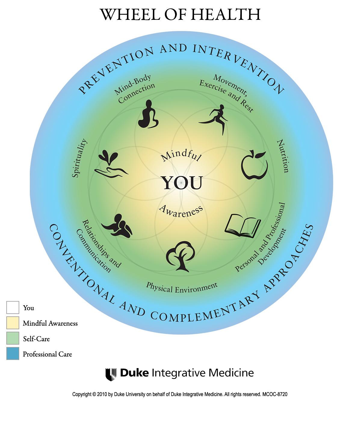 Wheel of Health.png