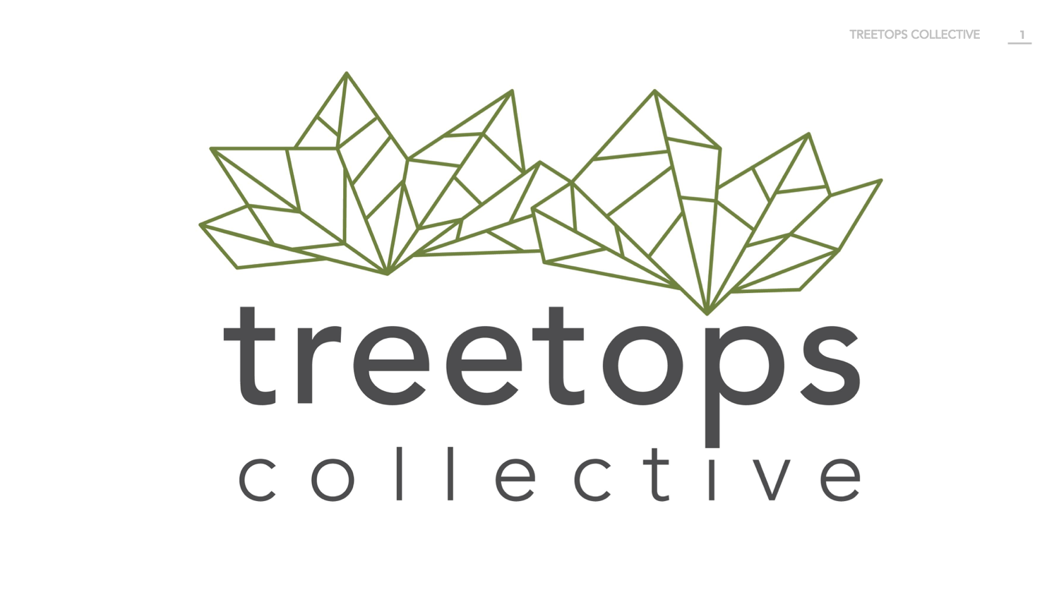 "Treetops Collective - ""Treetops Collective started with this question: how does a refugee woman make this community her true home - a place where she and her family can flourish for generations to come?Our mission is to connect refugee women with people and opportunities in their new community so they can flourish for generations to come -- standing tall and impacting others.""Treetops Collective is always looking for women dedicated to partnering with and empowering immigrant women within the Grand Rapids area, and more! Volunteer and find out the amazing ways you can get involved."