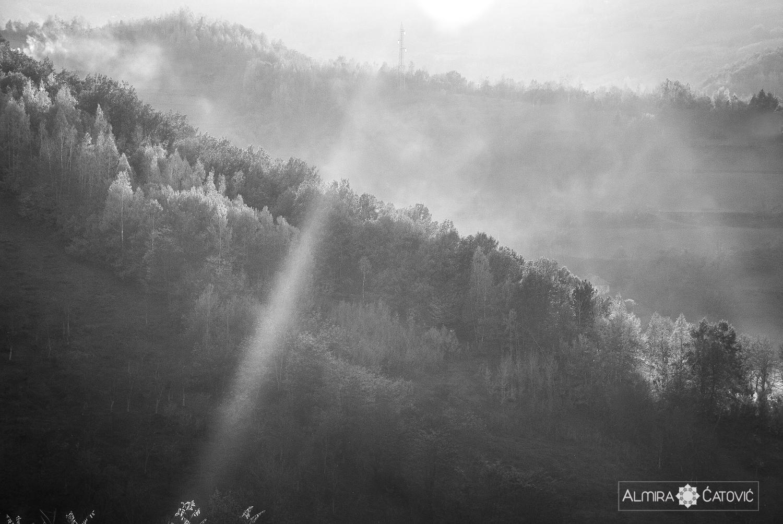 Almira Catovic_ Nature (31).jpg