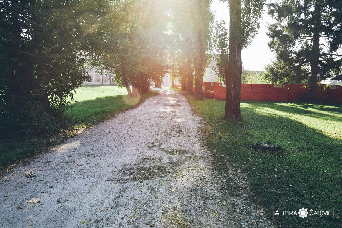 Almira-Catovic-Betnavski-grad (28).jpg