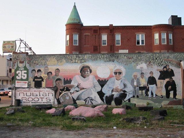 Dudley Street Neihborhood Initiative