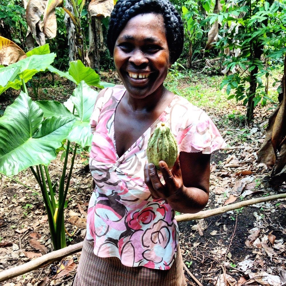 - Produits Des Iles SA (PISA) is a new cacao processor and exporter in Haiti's North. PISA entered the cacao market in order to introduce improved post harvest handling practices, and real competition, into a market previously plagued by poor quality and low-paying middlemen. Today, PISA works with an association of 1,489 smallholder farmers, 476 of whom are female. Together, they manage 974 hectares of organic certified land. Their cacao boasts a delicious combination of fig, tart cherry, and lightly roasted nuts