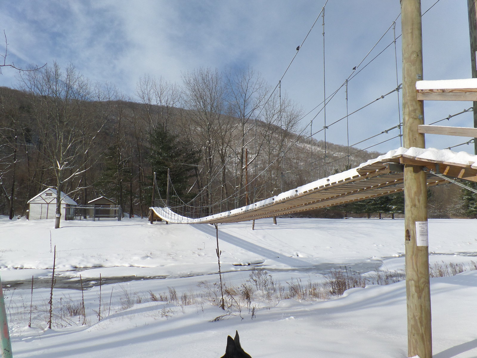 home suspention bridge winter.jpg
