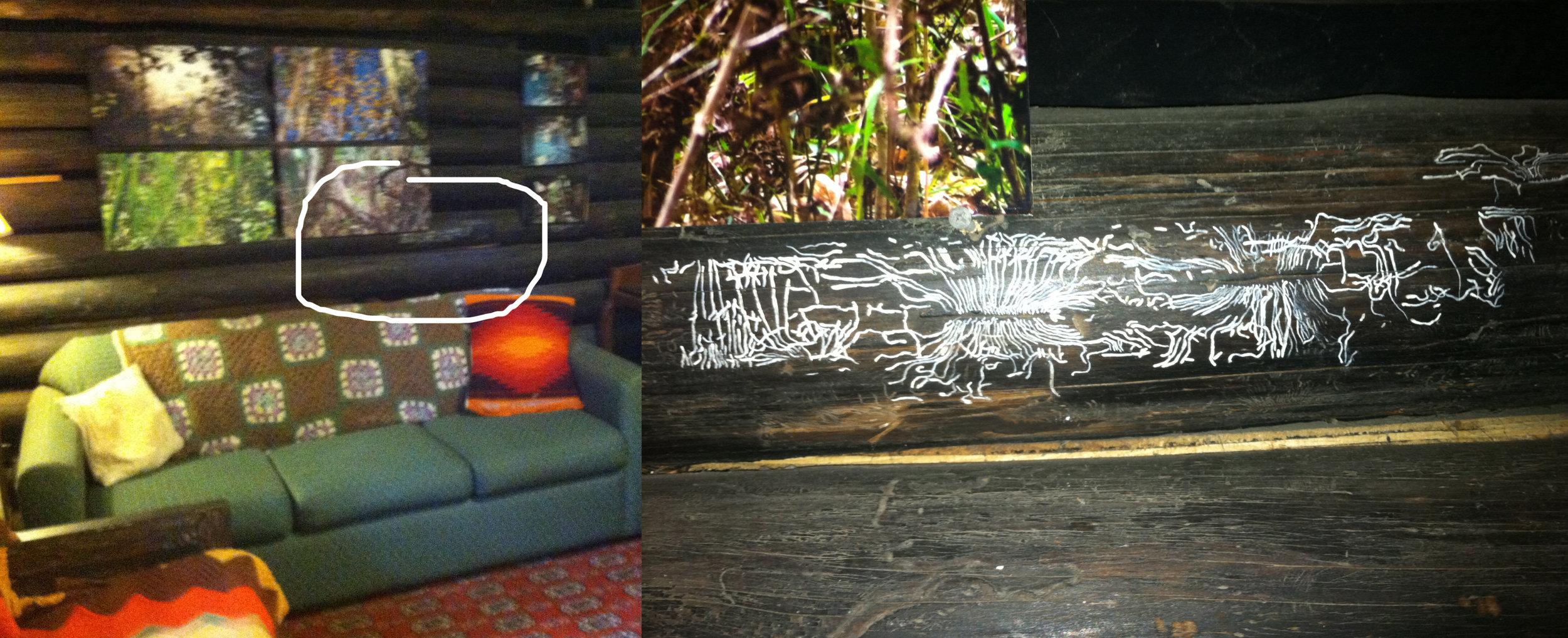 Cabin Log Patterns.jpg