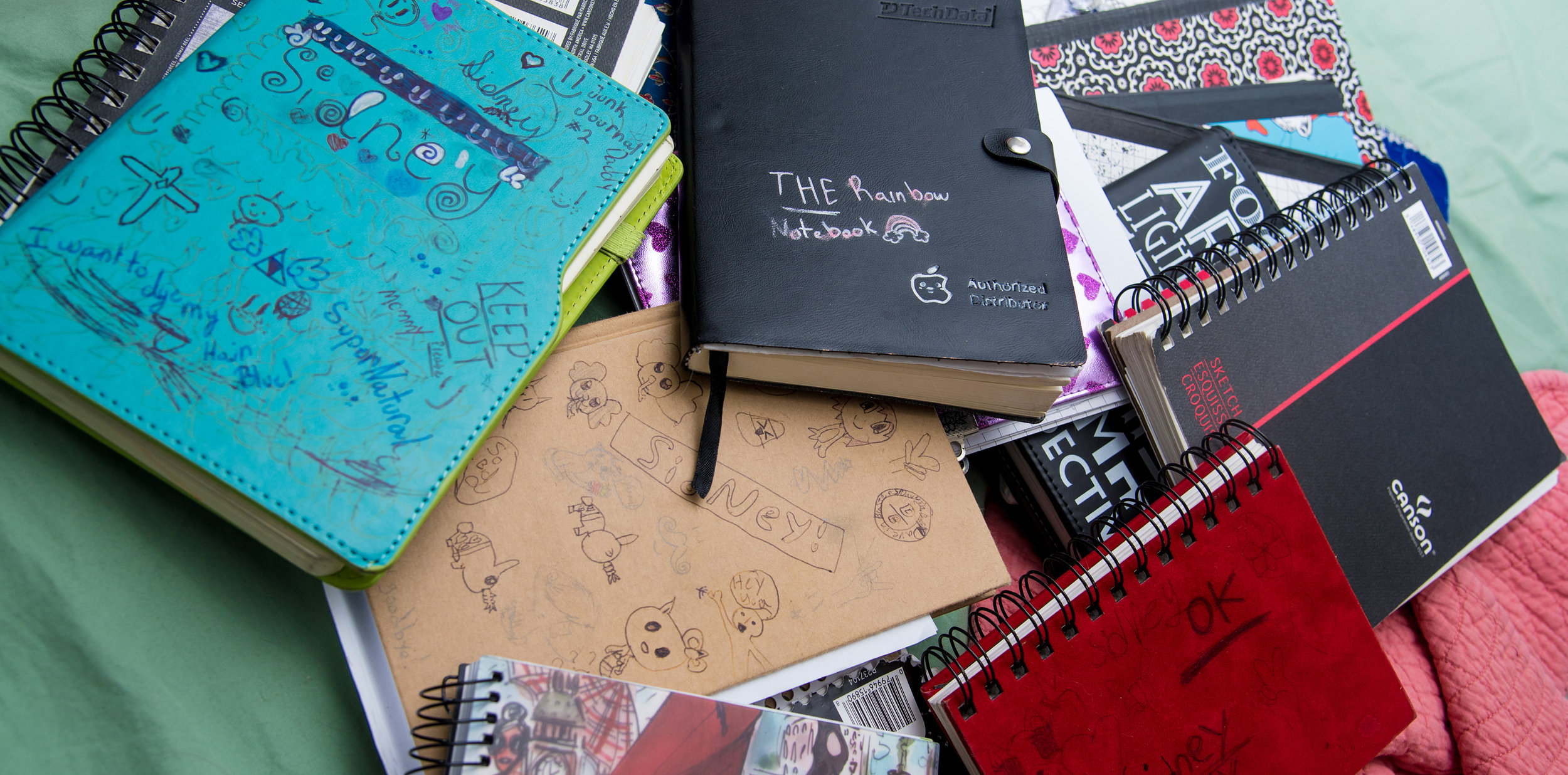 This is a small sampling of her growing sketchbook collection. There are many, many, MANY others. Every single page is covered in pencil and marker.