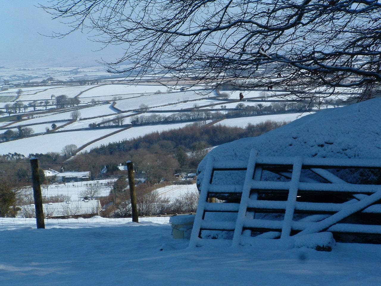 Winter at the Farm!