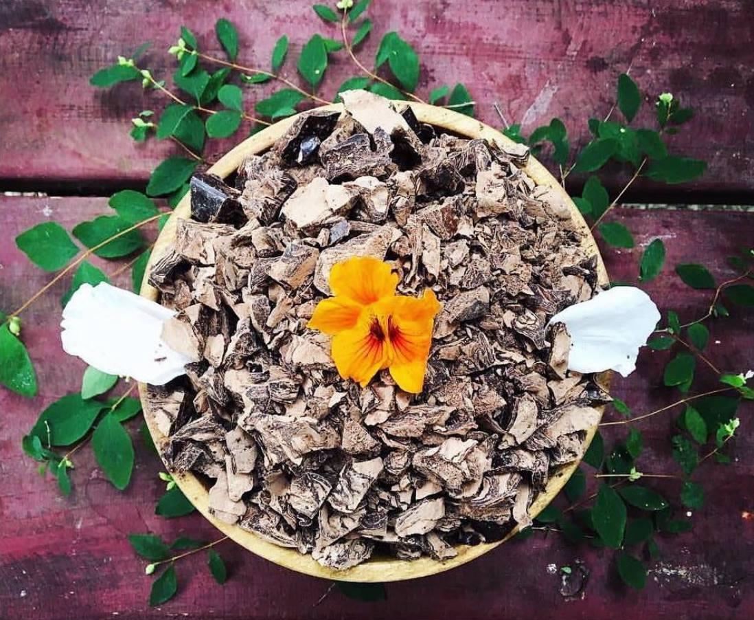 cacao-ceremony-rachelle-harvey-photo.jpg