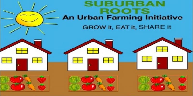 501(c)3 Non-Profit Organization /  www.suburbanroots.org