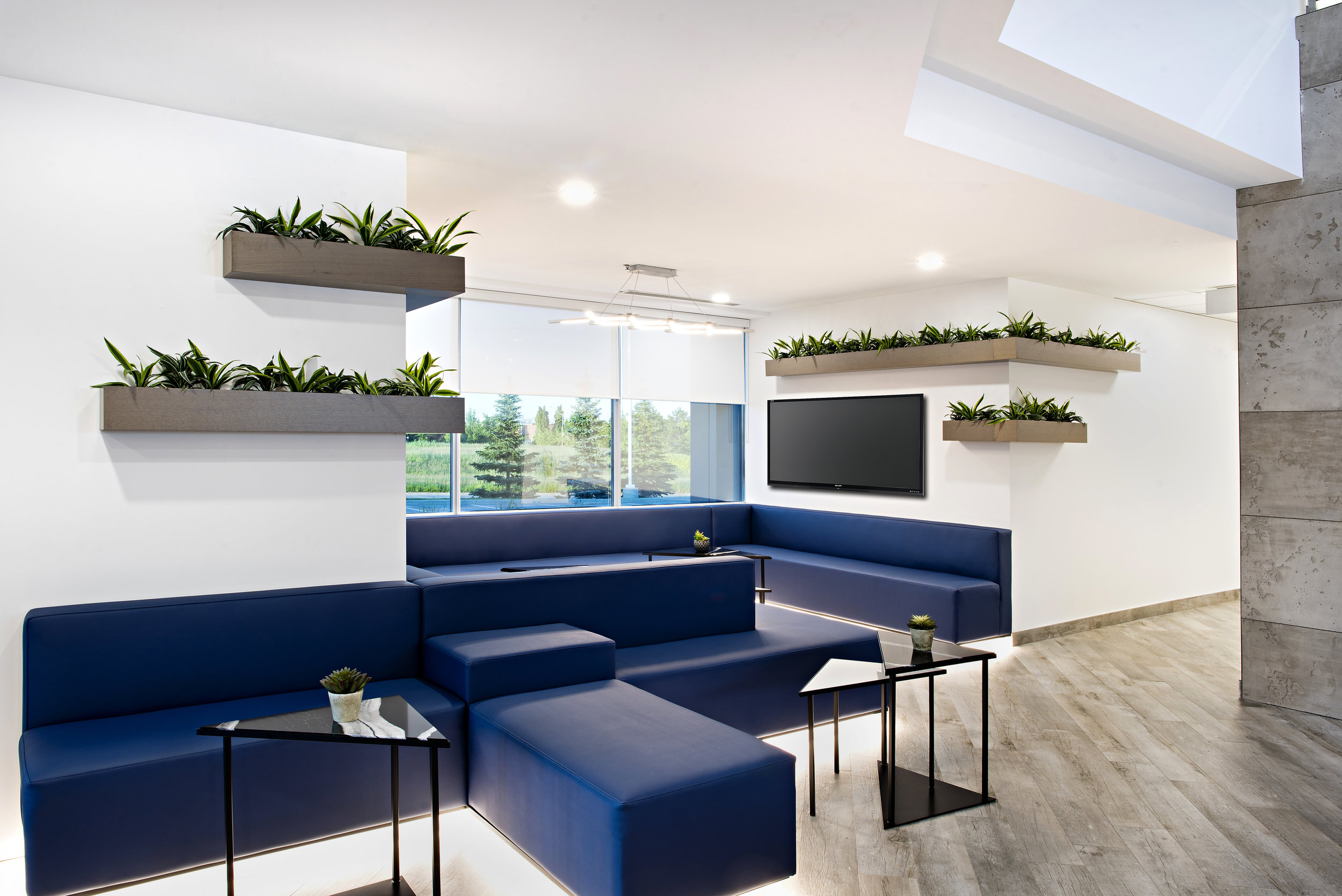 2design intrerior design commercial office space reception banquette seating navy blue vinyl led lighting stained white oak self watering planter white roller blind concrete wall tile grey laminate flooring custom metal and quartz nesting table.jpg