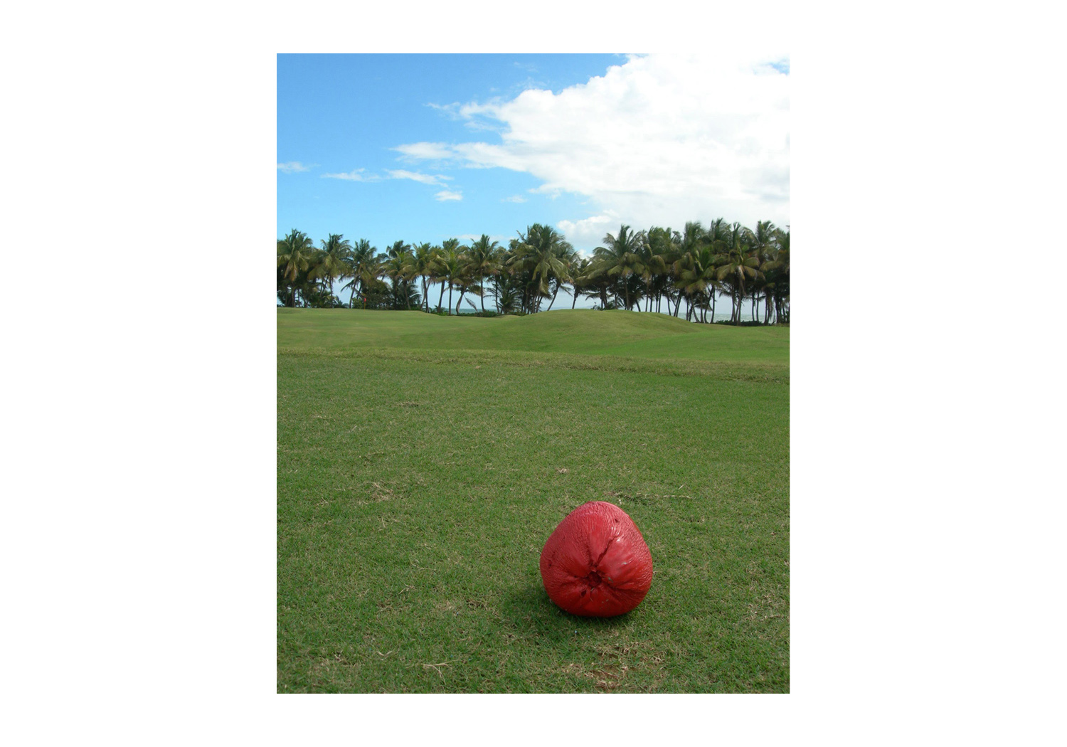 RedCoconut_GolfCourse.jpg