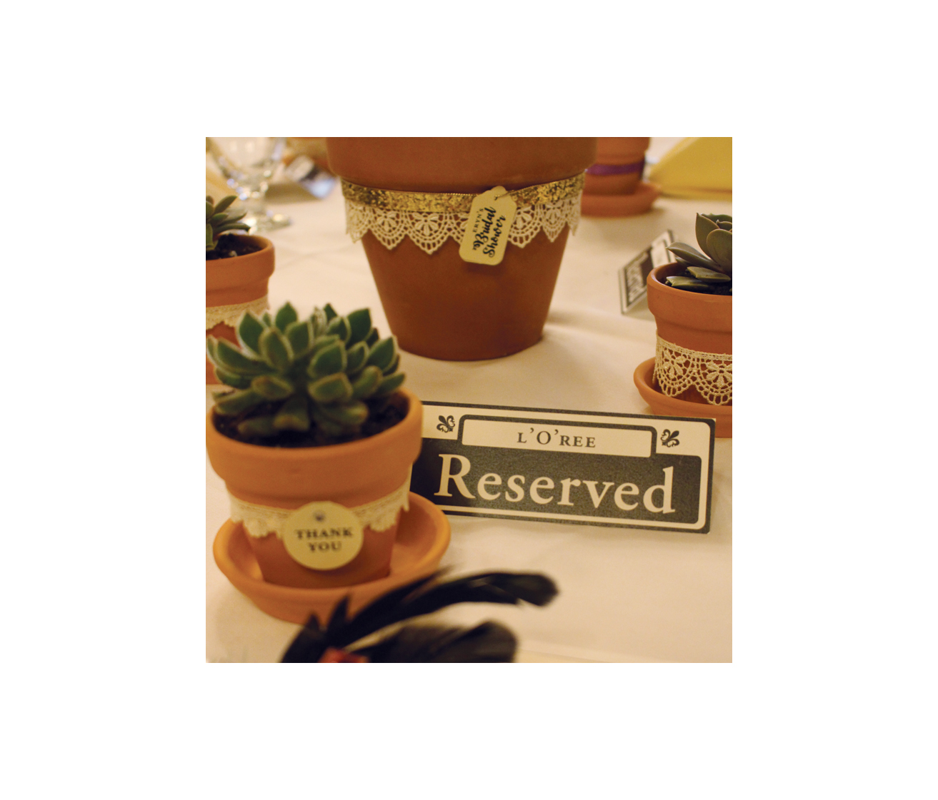 Favors, Reserved Card and Cedar Tree Centerpiece