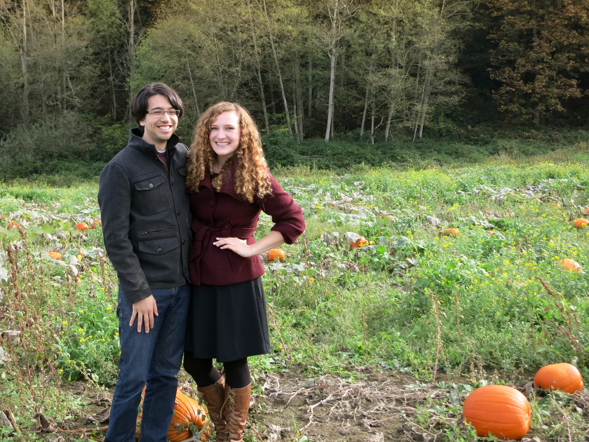 Pumpkin patch this fall.