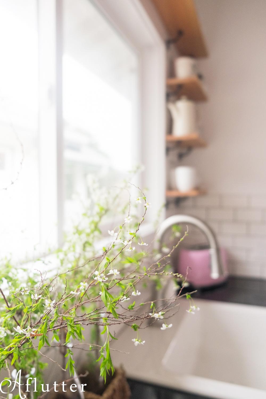 Kitchen-After-Photos-Spring-13-of-17-watermark.jpg