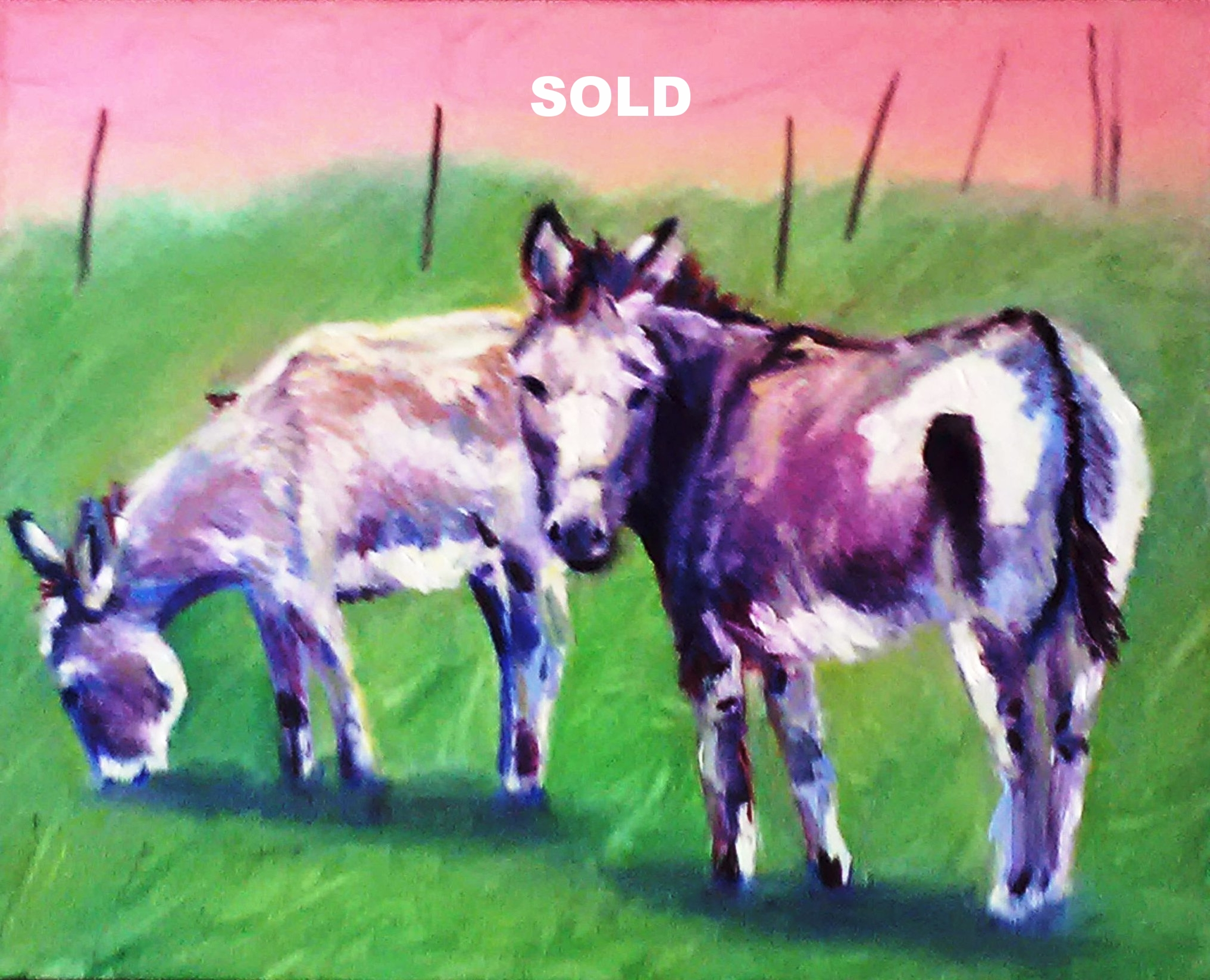 Pink Burros   18X20   Oil on Canvas
