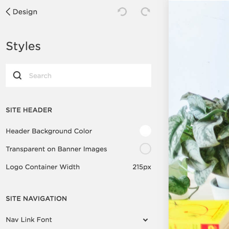 Style Editor Squarespace