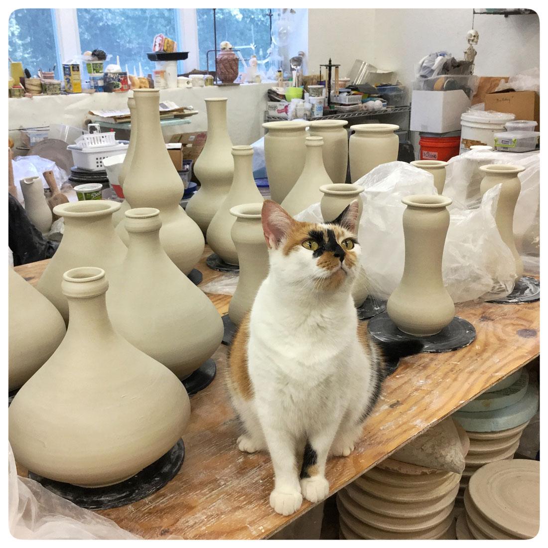 Copy of Koi our studio cat among Bruce Gholson's freshly thrown bowls | Bulldog Pottery | Seagrove | North Carolina