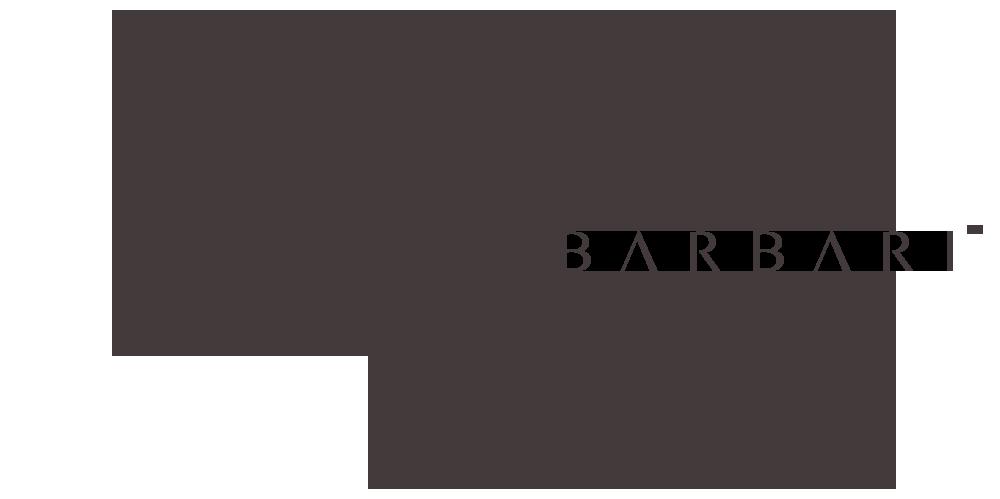 Barbari-x-levo-logo.png