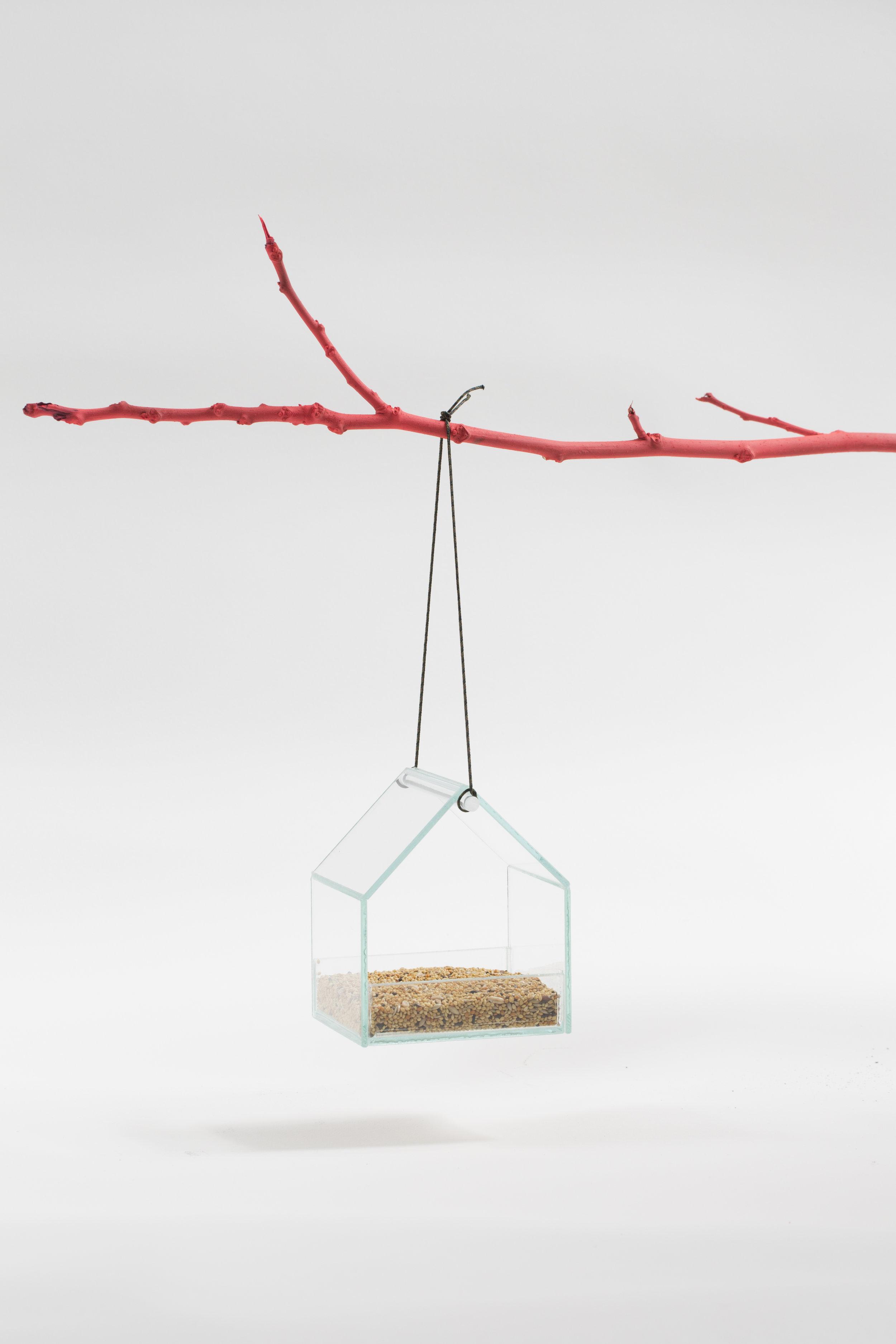 small w seeds_w branch .jpg