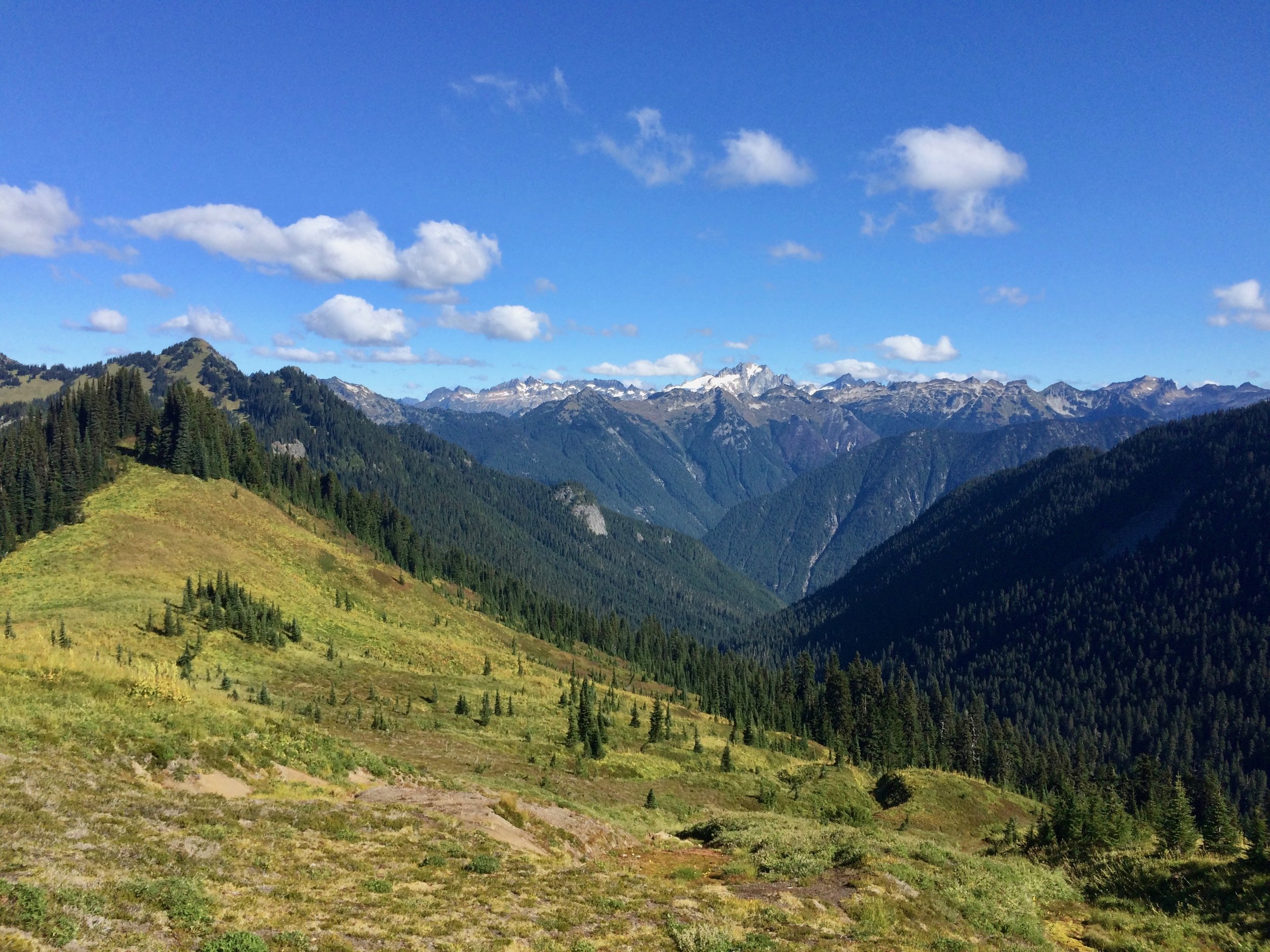 Mount Baker National Forest, WA