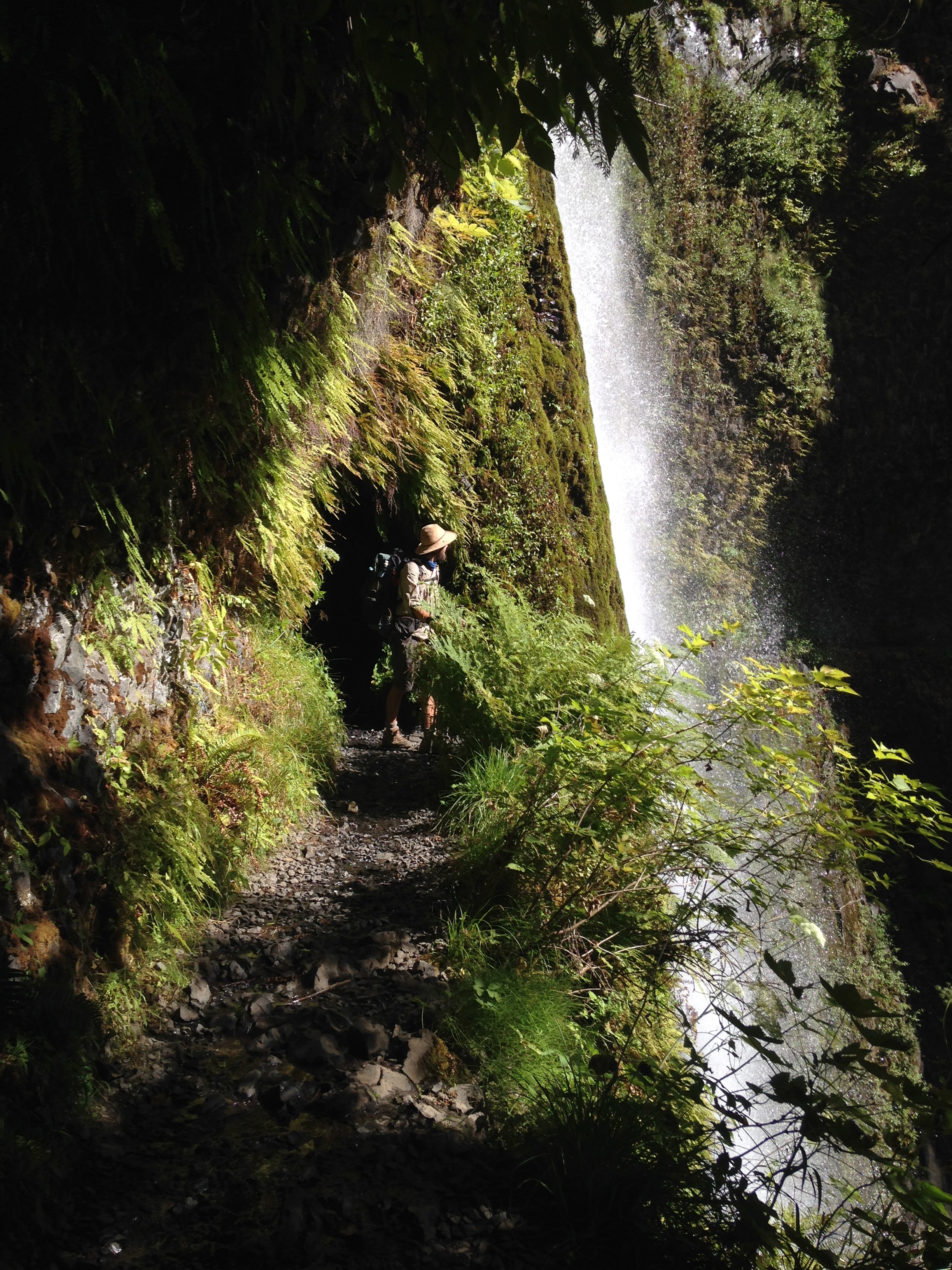 Tunnel Falls - Mount Hood National Forest, OR