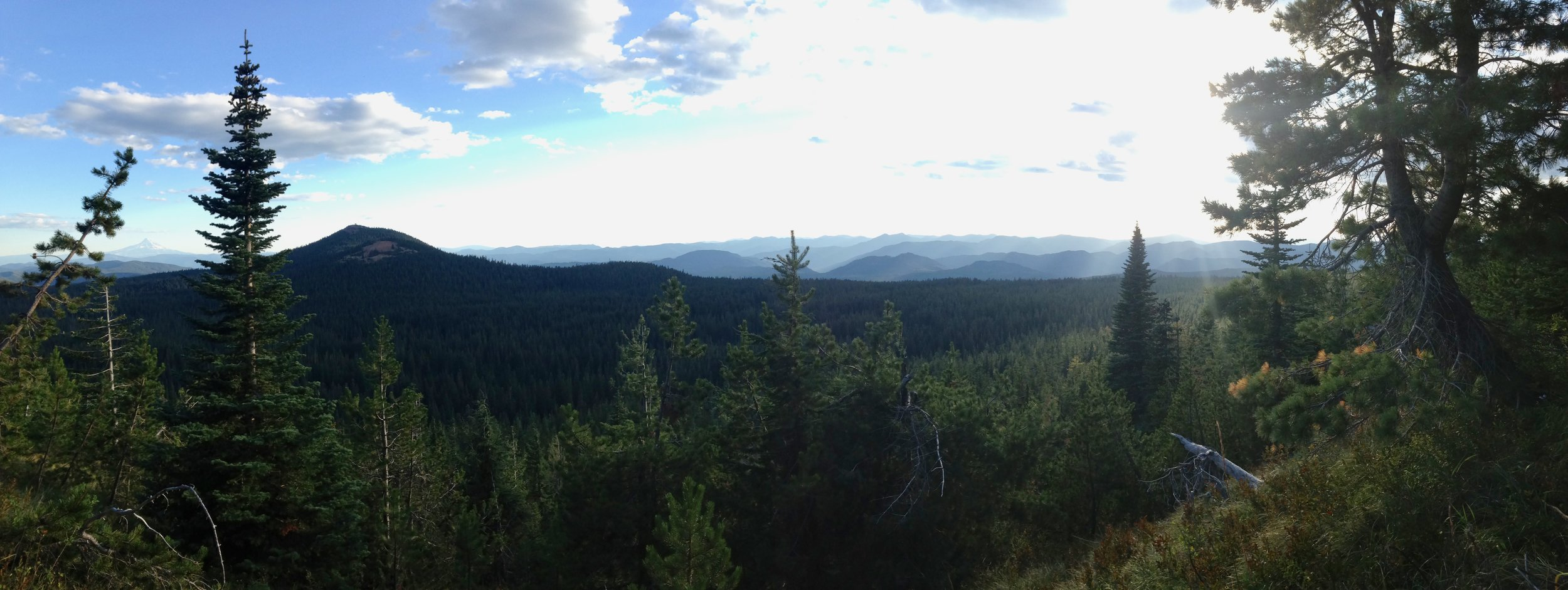 Gifford Pinchot National Forest, WA