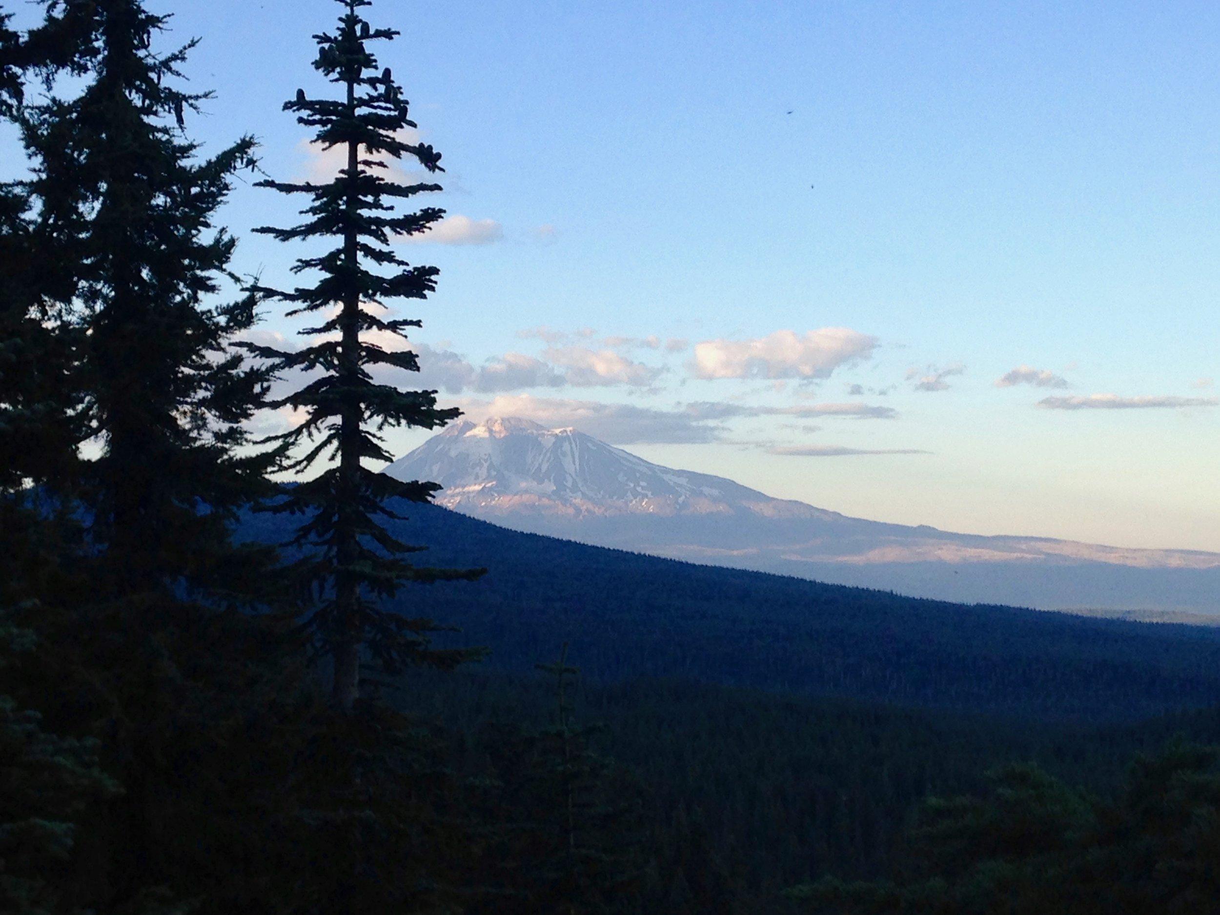 Mount Adams - Gifford Pinchot National Forest, WA