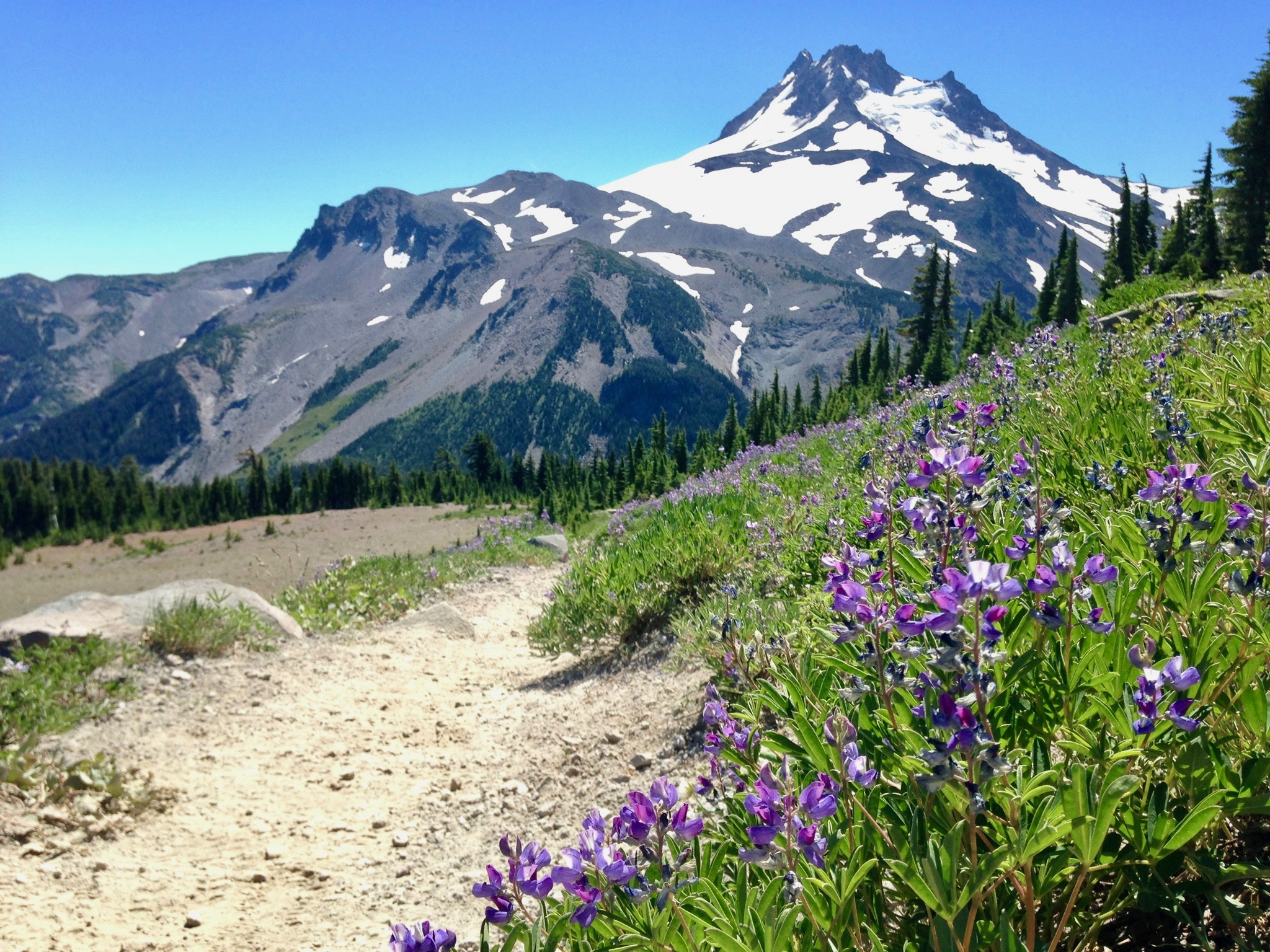 Mount Jefferson - Willamette National Forest, OR